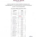 BANDO DI CONCORSO PUBBLICO PER L'ASSEGNAZIONE DI N° 2 AUTORIZZAZIONI PER IL NOLEGGIO DI AUTOVETTURA CON CONDUCENTE – ELENCO AMMESSI